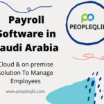 How to control inefficient and poorly executed payroll processes with Payroll Software in Saudi Arabia?